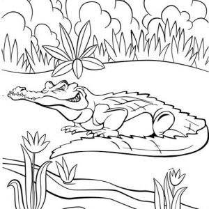 Best Crocodile Coloring Page