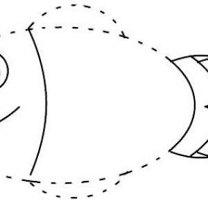 Cute Fish Cartoon Connect Dots
