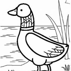 Daddy Duck Coloring Page for Kids