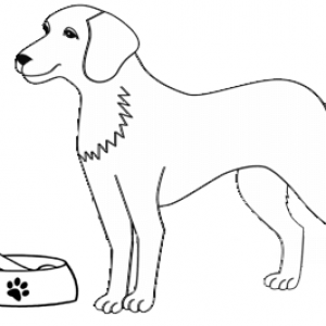 Dog getting near to food coloring page