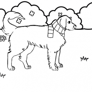 Dog walking on the yard coloring page