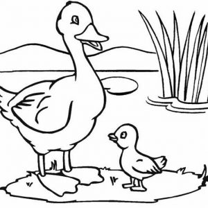Duck and Baby Swamp Coloring Page