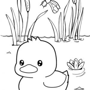 Fancy Baby Duck Cartoon Coloring Page