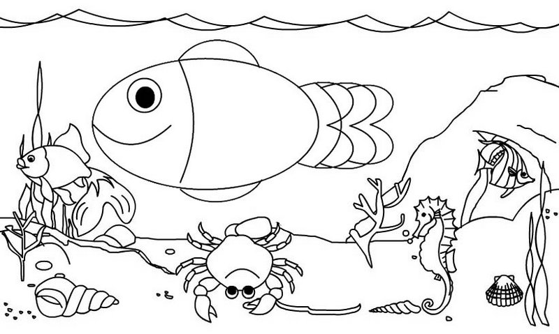 Fancy Fish and Sea Animal Coloring Page