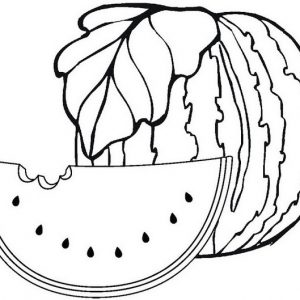 Learning Drawing and Coloring Watermelon and Slice of Watermelon with Coloring Page