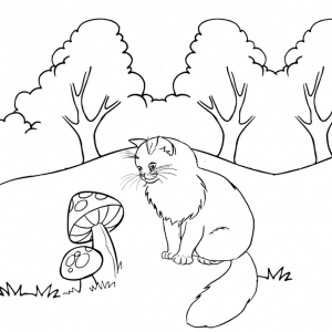 Beautiful Kitten Coloring Page