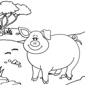 Cute and Beautiful Pig Coloring Page for Kids