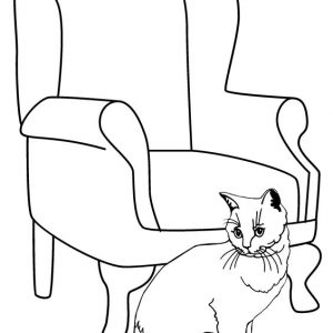 a Cat Sitting beside Chair Coloring Page