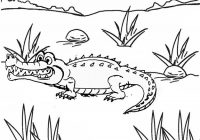 Awesome Crocodile Coloring Pages