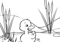 Baby Duck Cartoon Swimming Coloring Page