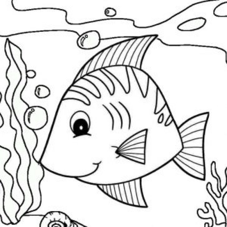 Permalink to Nine Funniest Fish Coloring Pages