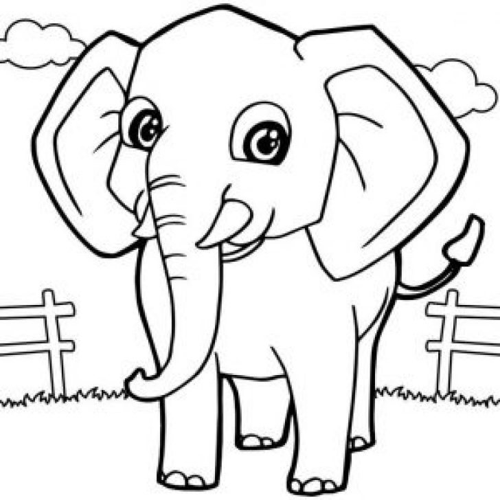 Permalink to Elephant Coloring Pages