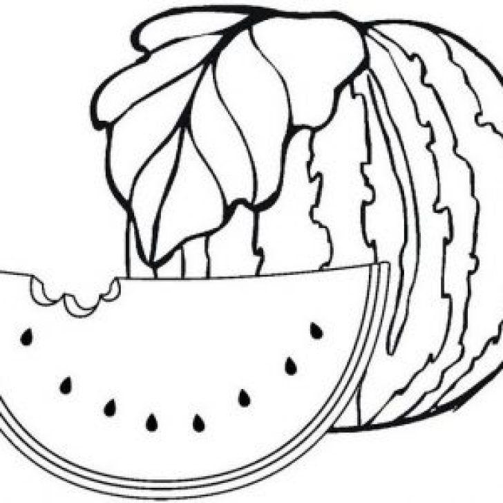 Permalink to Sweet and Fresh Watermelon Coloring Pages for Children and Families