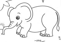 elephant in the middle forest coloring pages for kids